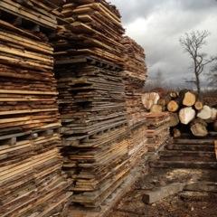 Scottish Wood Sawmillers